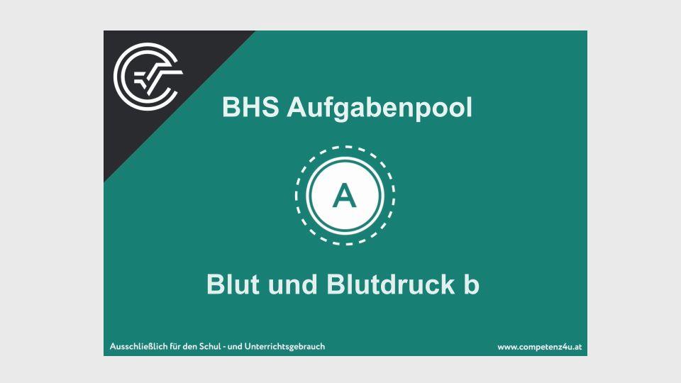 A_223 Blut und Blutdruck Zentralmatura Mathematik BMB Aufgabenpool BHS Teil A Bifie  Bundesministerium für Bildung