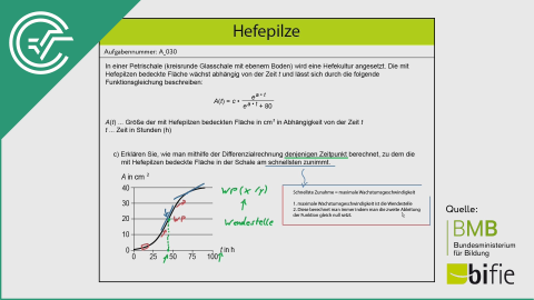 A_030 Hefepilze c [Differentialrechnung - Wendepunkt]