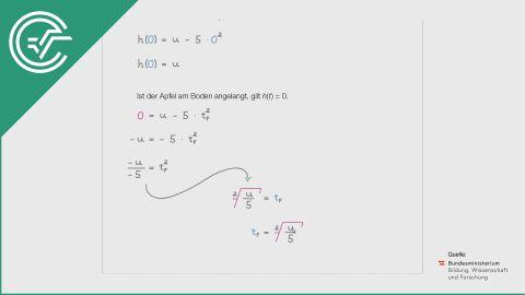 A_181 Freier Fall eines Apfels a [Quadratische Funktionen]