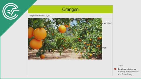 A_220 Orangen a [Arithmetisches Mittel]