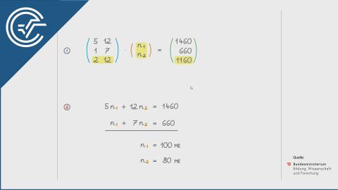 B_164 Kosten und Gewinn b [Matrixgleichung]