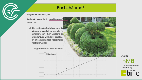 A_186 Buchsbäume a [Lineare Funktionen]