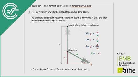 A_179 Maibaum aufstellen c [Trigonometrie]