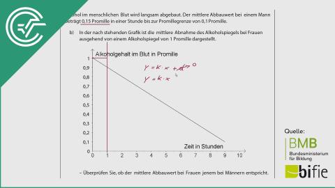 A_093 Alkoholspiegel b [Lineare Funktionen]